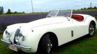 """Mārupē bāzētajā restaurācijas darbnīcā """"Riga Master Workshop"""" (RMW) nule ir atdzimusi vēl viena autobūves leģenda – 1954.gadā būvēts sporta automobilis..."""