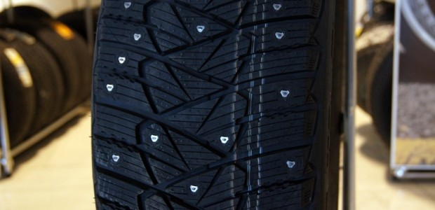 Dunlop Ice Touch_29.10.2012 054
