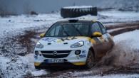 Eiropas rallija čempionāta (ERČ) posms Rally Liepāja (6.-8.02.)pulcēs visnotaļ kuplu skaitu vērā ņemamus šī čempionāta dalībniekus, liecina pieteikumi. Tostarp Kurzemes...