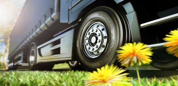 continental-tires-dandelion-taraxagum-image-1