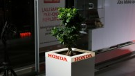 9-Wess Select Honda_08.11.2018.
