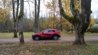 80-Mazda CX-30 Hybrid